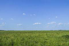 Plain of Voivodina Stock Photo