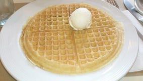 Plain waffle Stock Images