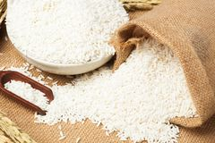 Plain white jasmine rice and wooden spoon royalty free stock image