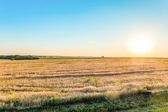 Plaine ensoleillée de paysage d'été Image stock