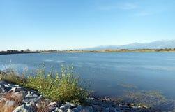 Plaine orientale de la Corse photos stock
