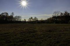 Plaine tände vid solen med dess träd i färgerna av hösten arkivfoton