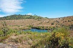 Plaines de Horton dans Sri Lanka photo libre de droits