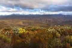 Plaines et montagnes africaines de Baviaan Photographie stock