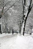 Plainpalais place by winter, Geneva, Switzerland Stock Images