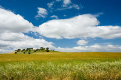 Plains of Alentejo, Portugal Stock Image