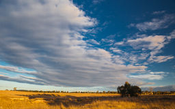 Plains near Canberra, Australia Capital Territory Stock Images