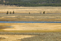 The Plains. The river runs through the plains of the Grand Teton National Park Stock Image