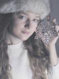 Plaisir de l'hiver Photographie stock