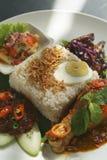 Plaisir de malaysian de lemak de Nasi Photos libres de droits