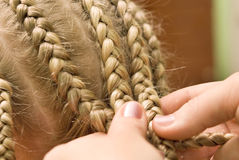 Plait braid. Barber makes the hair girl Royalty Free Stock Image