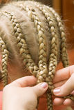 Plait braid Stock Image