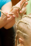 Plait braid Royalty Free Stock Photo