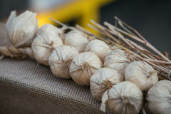 Plait Of Fake Decorative Garlic Laying On Piece  Cloth Stock Image