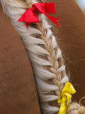 Plaited Horse Tail Stock Images