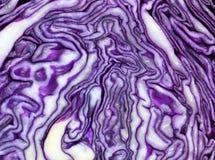 Plak rode kool, die een interessante violet-witte patroonachtergrond vormen Stock Afbeeldingen
