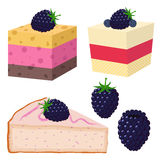 Plak van cake met braambes, desserts met bessen Zonnebloemzaden - zaadfonds Royalty-vrije Stock Afbeeldingen