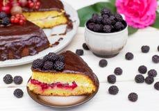 Plak van chocoladecake op een plaat Royalty-vrije Stock Afbeeldingen