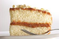 Plak van gelaagde cake Royalty-vrije Stock Foto's