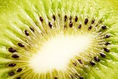 Plak van kiwi Royalty-vrije Stock Afbeelding