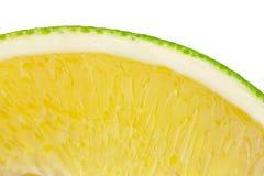 Plak van sinaasappel Royalty-vrije Stock Afbeelding