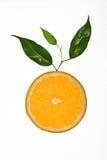 Plak van sinaasappel met bladeren Stock Foto