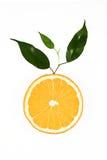 Plak van sinaasappel met bladeren Stock Afbeeldingen