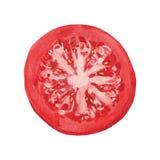 Plak van tomaat vector illustratie