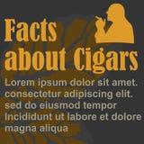 Plakat über das Rauchen, flaches Design, Schablone stock abbildung