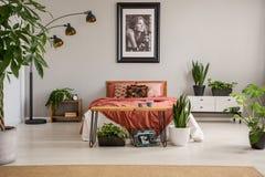Plakat über rotem Bett mit Decke im grauen Schlafzimmerinnenraum mit Anlagen und Teppich stockfotografie