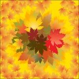 Plakat-Herbst bacground Lizenzfreie Stockbilder