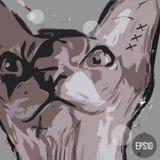 Plakat mit der schlechten Katze Lizenzfreie Stockfotos