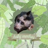 Plakat mit einem polygonalen Porträt eines netten Affebabys Stockfoto
