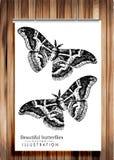 Plakat mit Schmetterlingen - vector Bild auf hölzernem Hintergrund Lizenzfreies Stockbild