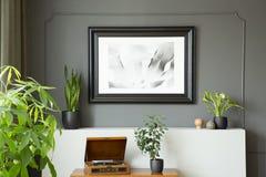 Plakat na popielatej ścianie nad dokumentacyjny gracz i rośliny w retro żywym izbowym wnętrzu Istna fotografia obrazy stock