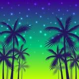 Plakat z cieniami drzewka palmowe rewolucjonistka zmierzchu tło Obraz Royalty Free