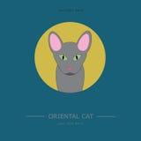 Plakat z kotem w retro stylu Obrazy Stock