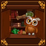 Plakat z wizerunkiem mądry sowy obsiadanie na półka na książki bibliotece z starymi książkami Kreskówka wektoru zakończenie ilustracji