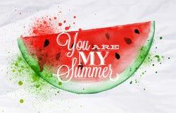 Plakatowy owocowy arbuz ilustracji
