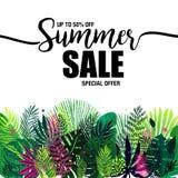 Plakatsommerschlussverkauf auf einem modischen tropischen Hintergrund, exotischer Palmenblumenstrauß Karte, Aufkleber, Flieger, F Stockfotografie