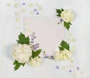 Plakboekpagina met witte en blauwe bloemen Royalty-vrije Stock Afbeeldingen