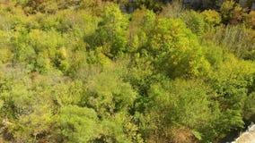 Plakidas鸟瞰图在希腊北部成拱形Zagori地区石桥梁  股票录像