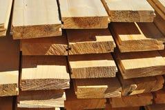 plakiety drzewo Fotografia Stock