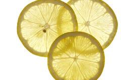 Plakken van citroen Stock Fotografie