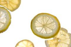 Plakken van citroen Royalty-vrije Stock Afbeelding
