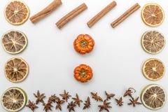 plakken van droge sinaasappelen, pompoenen, anijsplantbloem en kaneel op een witte achtergrond stock afbeelding