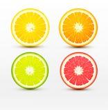 Plakken van sinaasappel, grapefruit, kalk, geïsoleerde citroen royalty-vrije illustratie