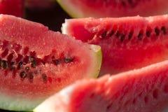 Plakken van verse watermeloen Royalty-vrije Stock Afbeeldingen