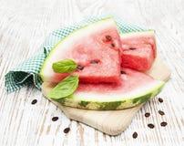 Plakken van watermeloen Royalty-vrije Stock Afbeelding
