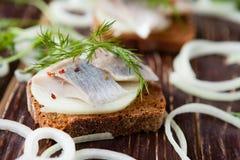 Plakken van zoute haringen op geheel korrelbrood met dille Stock Fotografie